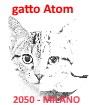 icona fantasma gatto Atom by CT 271119
